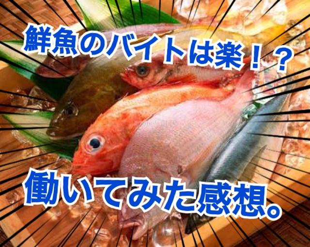 鮮魚のバイトはきつい?楽!?  実際に働いてみて思ったこと。